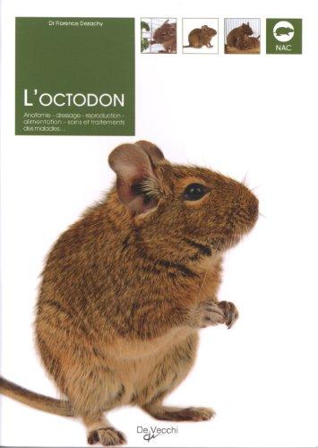 loctodon-anatomie-dressage-reproduction-alimentation-soins-et-traitements-des-maladies