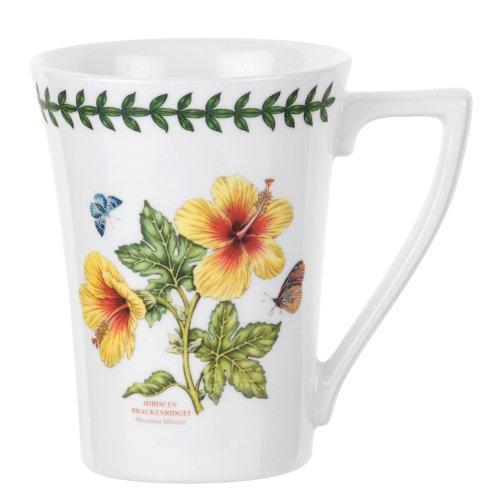 portmeirion-exotic-botanic-garden-10oz-mug-set-of-6