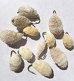 Brot fliegen für das Fliegenfischen , 12 Stück gemischt Forelle, Karpfen , seatrout Größe 6-12 Pack # 43,