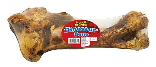 munch-crunch-des-os-de-dinosaure