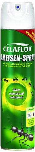 celaflor-ameisen-spray-400-ml