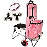 Artista Combinación Portátil Bolsa plegable Carrito Carrito de herramientas de pintura con asiento, ruedas de