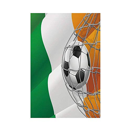 Liumiang Eco-Friendly Manual Custom Garden Flag Demonstration Flag Game Flag,Irish,Sports Theme Soccer Ball in a Net Game Goal with Ireland National Flag Victory Win,Multicolorec décor (Spring-sport Irish)