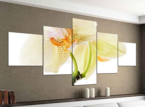 Acrylglasbilder 5 Teilig 200x100cm Orchidee weiß gelb Königin Blume Druck Acrylbild Acryl Acrylglas Bilder Bild 14F1026