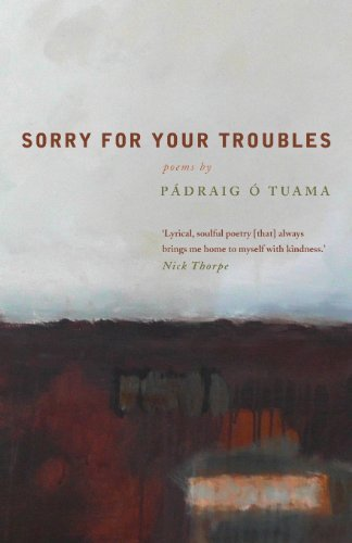 Sorry For Your Troubles: Written by Padraig O Tuama, 2013 Edition, Publisher: Canterbury Press Norwich [Paperback]