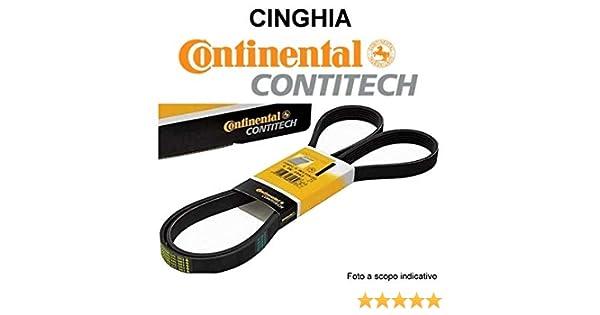 Contitech V-Ribbed Belt 5PK1310