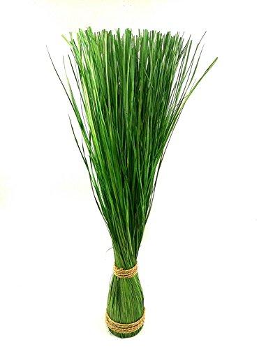 Preisvergleich Produktbild Gras Grasbündel im Garten Grasbund Deko Zweige Grasbüschel (85 cm)