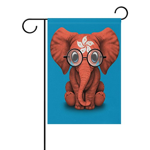 LIANCHENYI Hong Kong Flagge Baby Elefant mit Brille doppelseitig Familie Flagge Polyester Outdoor Flagge Home Party Decro Garten Flagge 71,1 x 101,6 cm