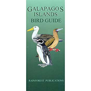 Galapagos Islands Bird Guide