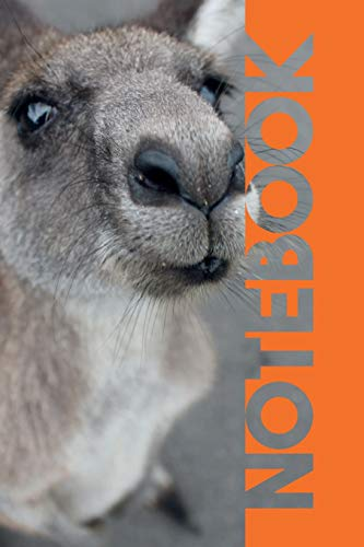 Notebook: Marsupial Professional Composition Book for Grey Kangaroo Lovers