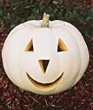 Hirts%3A Seed%3B Vegetable Ghostly White Pumpkin 10 Seeds Lumina