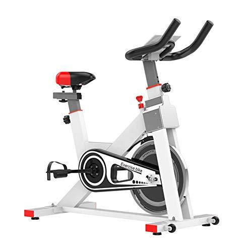 KuaiKeSport Heimtrainer Fahrrad für Zuhause,Indoor Cycle mit Intelligente App Elektromagnetisch Spinning Fahrrad,Ergometer Fahrrad Verstellbarer Lenker Widerstand Mit Rutschfestem Pedal,White