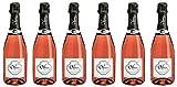 Bio Wein Domaine Delmas Cuvée Séduction Brut Rosé Crémant Limoux Languedoc Frankreich Trocken Vegan (6 x 0.75 l)