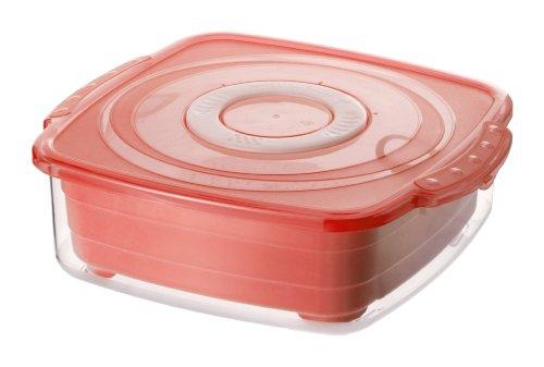 Rotho 1729902203 Mikrowellen-Dampfgarer quadratisch, gesundes und zeitsparendes Kochen, BPA-frei, Inhalt 2 l, circa 23,5 x 21 x 7,5 cm (LxBxH), rot/transparent (Kleine Lebensmittel-dampfgarer)