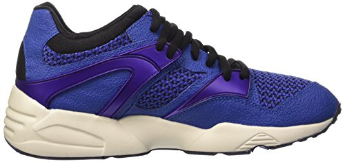 Puma Men    s Blaze Knit Gymnastics Shoes  Blue  10