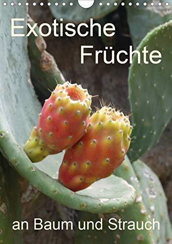n Baum und Strauch (Wandkalender 2020 DIN A4 hoch): Tropisches Obst fotografiert wie es wächst an der Pflanze (Planer, 14 Seiten ) (CALVENDO Natur) ()