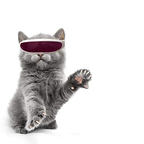 TUDUZ-Haustier Brillen Winddichter Schutz Hündchen-Welpen-Sonnenbrille UV-Sonnenbrillen für Katzen und Kleine Hunde für Fotografie Sonnenbrille (Pink)