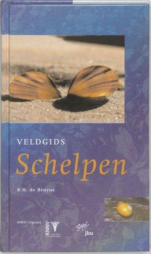 Veldgids schelpen / druk 1 (KNNV Veldgids (Field Guides), Band 14) -
