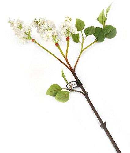 Floral Elegance F084WL - Tige artificielle de Lilas blanc de 76 cm