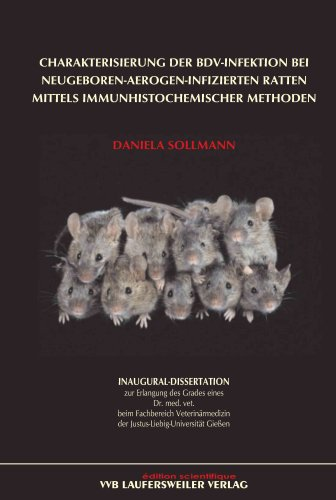 charakterisierung-der-bdv-infektion-bei-neugeboren-aerogen-infizierten-ratten-mittels-immunhistochem