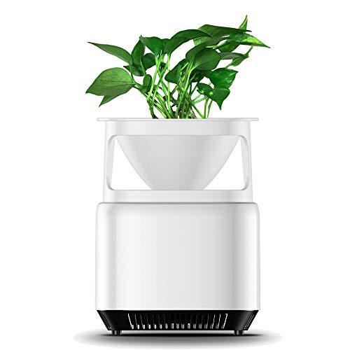 Desktop Micro Ökologische Luftreiniger Luftreiniger Reiniger Sterilisator Haushalt Negative Ionen Generator Formaldehyd Schimmel Geruch Staub Rauch Pollen-Entferner mit Blumentopf AC110V ~ 240 V -