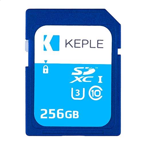 Scheda SD da 256GB Classe 10 Scheda di Memoria ad Alta Velocità per Sony CyberShot RX-100 IV/V/VI, DSC-RX10 II/III, DSC-RX0, DSC-RX1R / RX1R II / RX10M4, DSC-HX99 Telecamera | SDXC 256 GB