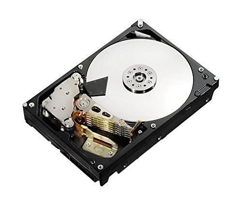 Hitachi Global Storage Technologies (HGST Ultrastar Kit 2TB HDD 8,9cm 3,5Zoll Enterpris)