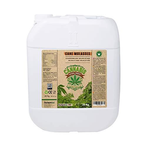 NortemBio Agro Melaza de Caña Natural 28 Kg. Especial para Cultivos de Cannabis y Marihuana. Mejora su Crecimiento y Floración. No Sulfurada. Producto CE