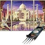 noris Schipper - Malen nach Zahlen - Taj Mahal Denkmal inkl. Pinselset