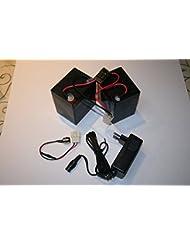 Razor Crazy Cart batería de repuesto Kit