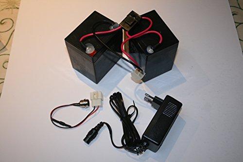 Razor Crazy Cart Ersatz Batterie Kit