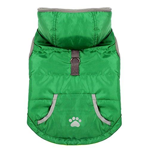 Pecute Vestiti per Cani Dog Vest Felpa con Cappuccio Invernale Con Fascia Chiusura per Cani Piccoli Medi (Verde, S)