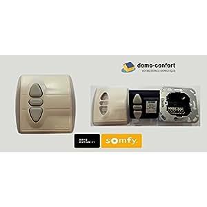 Inverseur / transformateur 24 V UPS 100 SOMFY remplacé par SY1870072