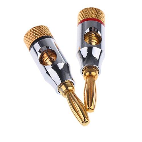 Shiwaki 2X Audio Lautsprecherkabel Kabel Schraube Bananenstecker Vergoldete Platte Mit Loch (Lautsprecher-draht-platte)