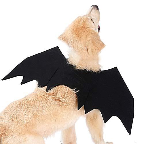 @W.H.Y Halloween lustige Haustier Fledermaus Flügel Kleidung,L