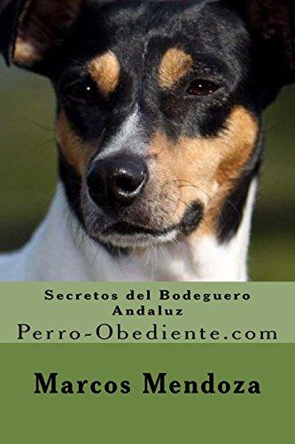 Bodegueros en adopción - Cachorros 3