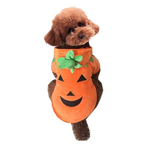 Yuncai Lustige Haustier Kleidung Kürbis-Teufel Cosplay Kostüm für Hund Katze Halloween Verkleidung Party Als Bild S (Teufel Halloween Kostüme Hunde)