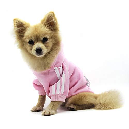 QiCheng&LYS Hundemantel Adidog Hund Hoodies Kleidung, Pet Puppy Katze Niedlicher Baumwoll Warm Hoodies Coat Pullover (XL, rose)
