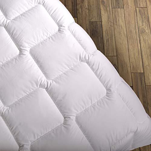 Wendre Premium Bettdecke Flauschige, Weiche & Warme Decke | Ideal für Allergiker | Waschmaschinenfest | Mikrofaser Bezug | 155x220 - Queen Size | Weiß