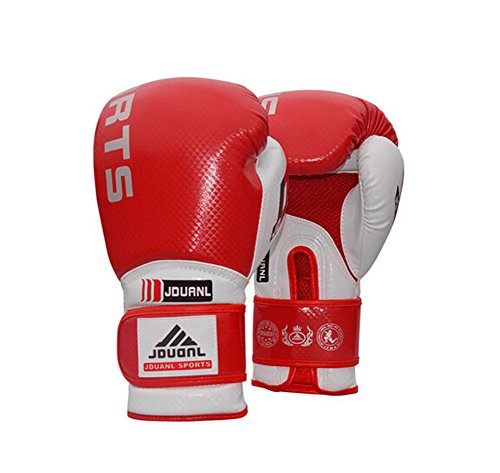 Professional Boxing Martial Arts Trainingshandschuhe rot, 10 Ounce