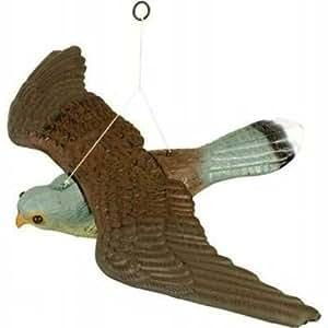 Stv jardin en forme de faucon leurre pour effrayer les oiseaux anti neuf jardin - Pour effrayer les oiseaux ...