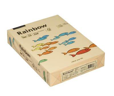 Preisvergleich Produktbild Rainbow Kopierpapier 88042283 A4 160g chamois 250 Bl./Pack.