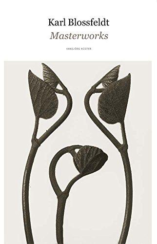Karl Blossfeldt: Masterworks