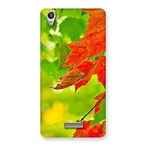 Cute Leaf Multicolor Back Case Cover for Lava-Pixel-V1