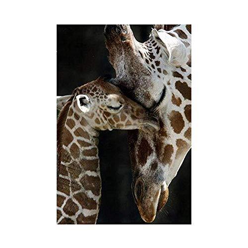 HVdsyf 5d DIY Exquisite Diamant Malerei Kits, Deer Muster Volle Runde Bohrer Strass Stickerei Malerei Handwerk Bild Für Wand Wohnkultur (30x40 cm) -