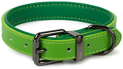 Puccybell Hundehalsband 2 farbig mit Leder, klassisches Halsband in Kontrastfarben für kleine, mittelgroße und große Hunde HB004 (L, Grün)