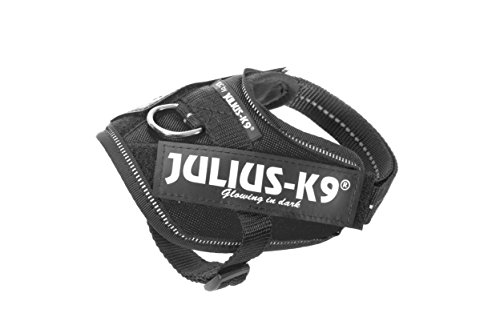 Julius-K9 16IDC-P-B1 IDC Power Harness, Tamaño Baby 1, Negro