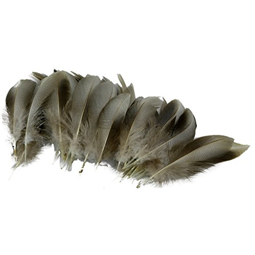 Natürliche Huhn/Ente Feder Diy Handwerk Zubehör Flügelfedern 5-10 Cm - Natürlich ente feder, 8-12 cm (Halloween Kostüme Und Kunsthandwerk)