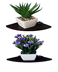 Madhuran Corner Wall Shelf Wenge set of 2-15CM / Display Dcor wooden Decorative decoration dining Dark Storage shelves acts stand slabs Showcase Statues Shower Stellar Mounted mdf multipurpose mantelpieces Counter cupboard chest acts cabinet Home holder Kitchen Keeping Rectangular racks room Ladder living Floating Bracket brown black Book bed Organizer office Perfect Place Photoframes Utility trophy items Captiver Series