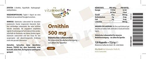 Vita World L-Ornithin 500mg 120 Vegi Kapseln Apotheken Herstellung